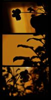 Sillhouette - 2 by Suinaliath