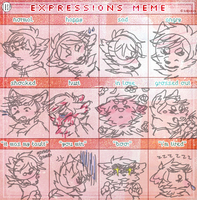 TBSP|expression meme by sleepies