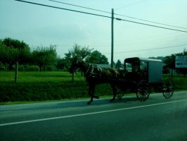 amish by wireswaveso0