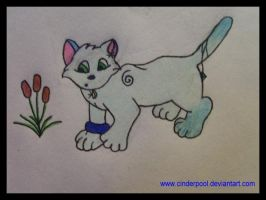 Giftart: Silverfrost42 by Cinderpool