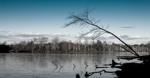 Icy Lake by RP451