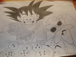 Dragon Ball by Animally