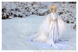 Winter prince by fuyuhime