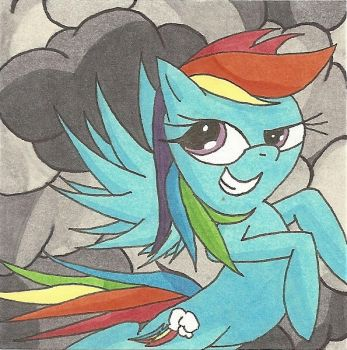 Rainbow Dash Storm Chaser Sticky Note by AgentEvans