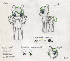 Pony OC Concepts (Name and Cutie Mark Decided) by PuppyDawg1022