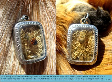 Honey Bee and Bull Bone Marrow Pendant - For Sale! by CatSilver