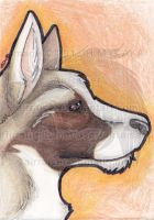 ATC: German Shepherd 2013 by AirRaiser