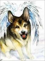 You will never been forgotten by WhiteSpiritWolf