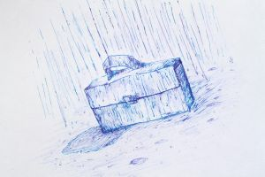 Wet Suitcase by Wherehavemysocksgone