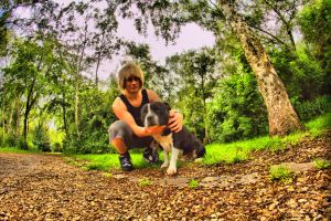HDR Staff Dog In Park by TMProjection
