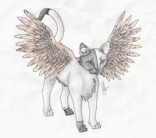 Winged Cat by a-place-called-home
