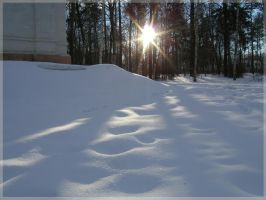 Low winter sun and snow by mirator