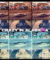 Crazy in Alabama by Petko