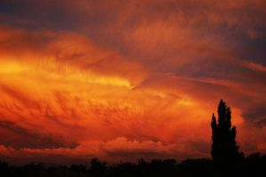 Fire In The Sky II by Crappleberry