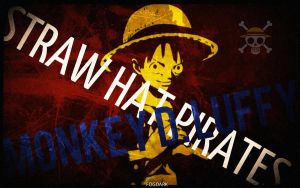 Captain of the Straw Hat Pirates by fogdark