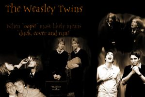 The Weasley Twins - duck, cover and RUN by Banashee