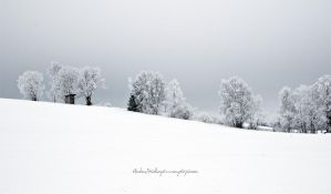White Hill by Stridsberg