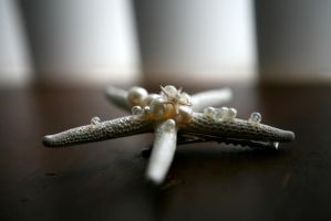 Angel Sea Star 5 by TheRealLittleMermaid