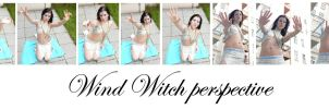 wind witch perspective by syccas-stock