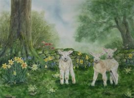 Spring Lamb. by SueMArt