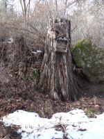 Bird House on a Stump by Whimseystock
