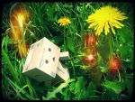 Danbo discovered the earth energy by jostikero