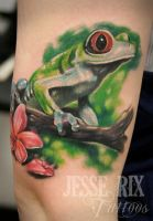 Tree Frog by jesserix