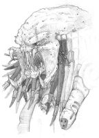 Predator Hunter Unmasked by moefoe