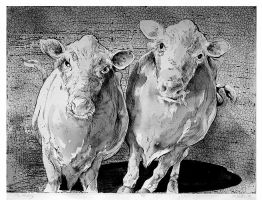 Cow Tipping by ralphslatton