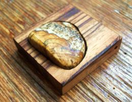 Picture Jasper in Tigerwood by salvagedsword