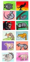 marsupials by tree27