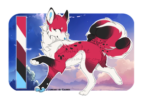 .: Kitsune Auction :. [CLOSED] by Cannidae