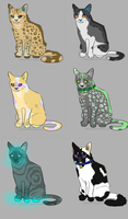 Mystery Cat adopt batch 1 by MtC-Adopts