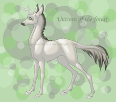 Unicorn by sealle