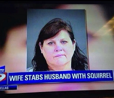 Who stabs people with a squirrel?! by boeingboeing2