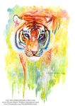 Rainbow Tiger by Nicole-Marie-Walker