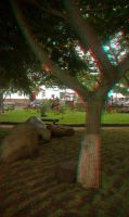 Stereo anaglyph photo Barva 01 by otas32