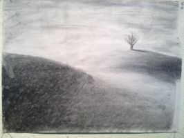 Charcoal Field by BennyBrickster