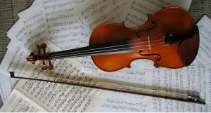 violin by Samand