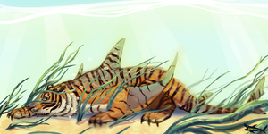 Tigershark by canned-sardines
