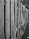 Wooden Fence by FT69