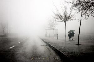 FOG 005 by metindemiralay