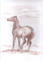 random horse in brown by Mallorn85