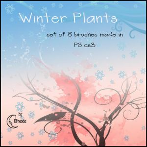 http://th05.deviantart.net/fs31/300W/i/2008/196/e/c/Winter_Plants_Brushes_by_Coby17.jpg