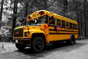 Tipical schoolbus by Dudovitz