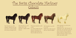The Swiss Chocolate Hackney - Colour Sheet by LiaLithiumTM
