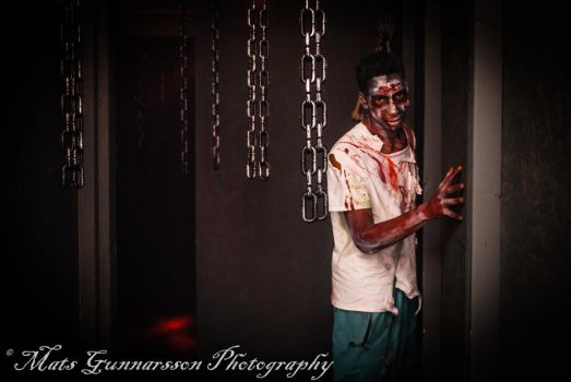 Zombie Haunted House, San Jose, CA by ChefPhoto