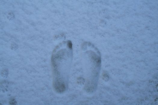 Footprints by wendleberry