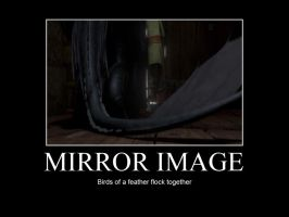HTTYD-Mirror Image by IllusionEvenstar