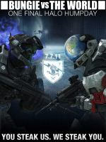 Bungie Vs The World by metarydly7111
